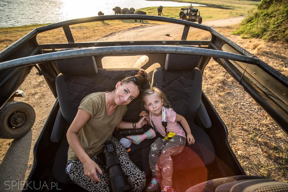 safari minneriya