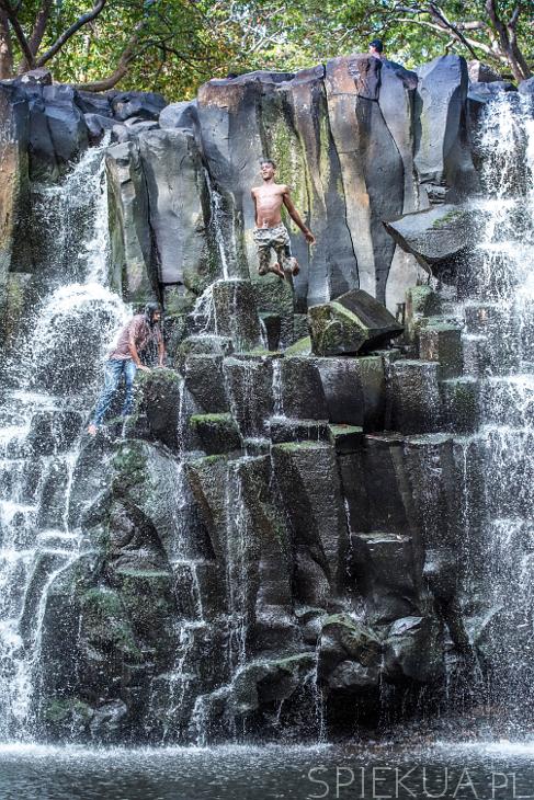 rochester falls