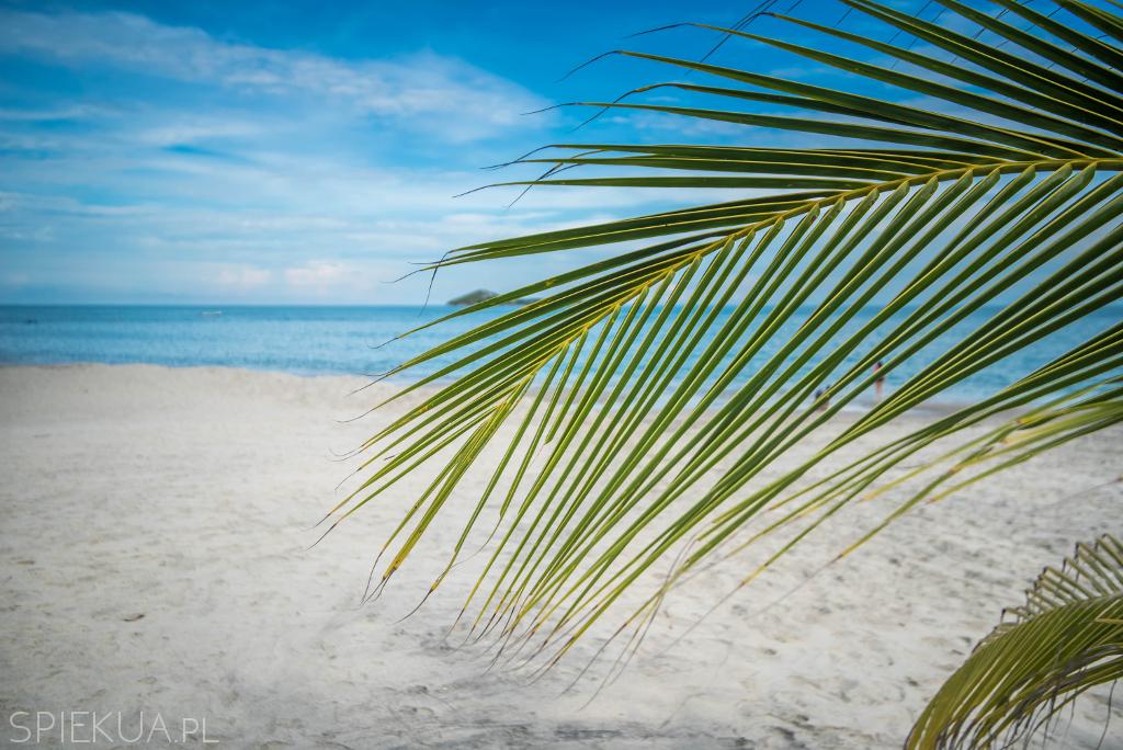 playa blanca panama