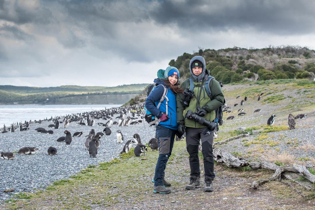 pingwiny Ushuaia