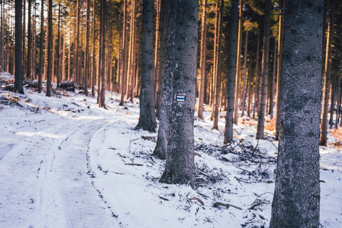 szlaki z dziekciem rudawy janowickie